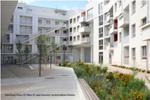 FREIRAUMGESTALTUNG in Kärntner Baugesetzen