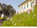 Stadt Gärten Parks Spiel Plätze in Klagenfurt